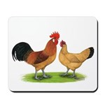 Buff Catalana Chickens2 Mousepad