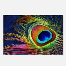 Peacock Feather Postcards (Package of 8)