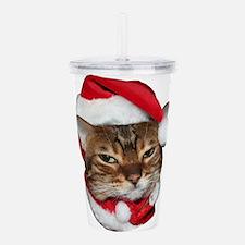 Santa Bengal Cat Acrylic Double-wall Tumbler