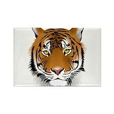 Wonderful Tiger Magnets