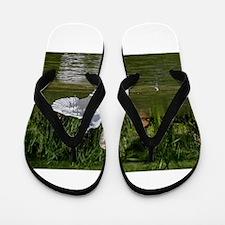Cute Peace love swimming Flip Flops