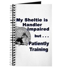Sheltie Agility Journal