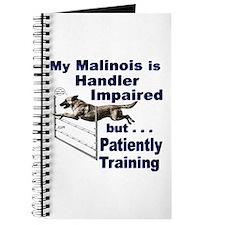 Malinois Agility Journal