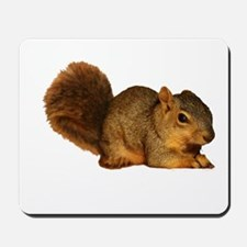 Squirrell Mousepad