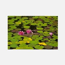 Funny Lilypad Rectangle Magnet