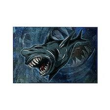 Shark Attack! Magnets