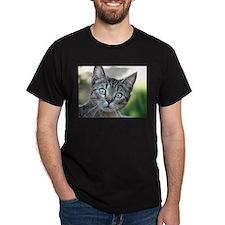 Sweet Cat T-Shirt