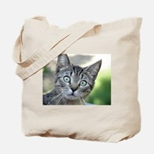 Cute Grey cat Tote Bag