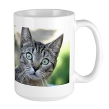 Sweet Cat Mugs
