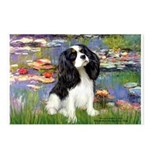 Lilies and Tri Cavalier Postcards (Package of 8)
