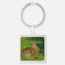 Cottontail Rabbit Keychains