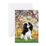 Spring & Tri Cavalier Greeting Cards (Pk of 10)