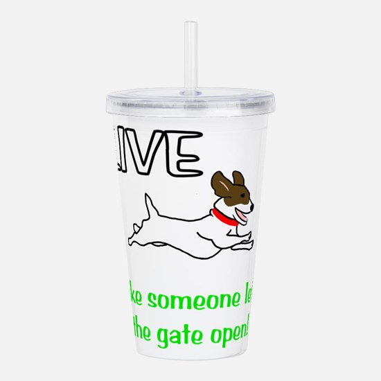 Live the gates open Acrylic Double-wall Tumbler