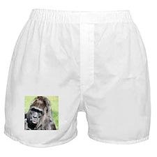 Cute Happy little trees Boxer Shorts