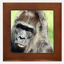 Unique Monkey business Framed Tile