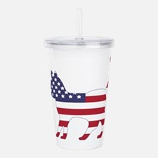 US Flag Cat Icon Acrylic Double-wall Tumbler