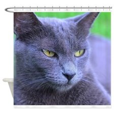 Cool Blue eyed cat Shower Curtain