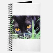Cute Kitty kats Journal