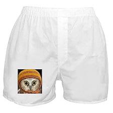 Funny Owl Boxer Shorts
