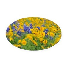 Waltz of the Flowers Oval Car Magnet