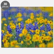 Unique Texas bluebonnets Puzzle