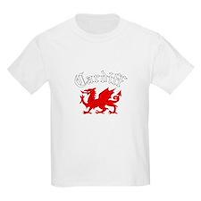Cardiff, Wales T-Shirt