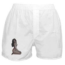 Italian Fine Art Boxer Shorts