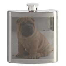 Sharpei Flask