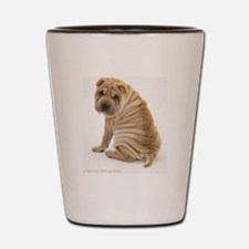 Sharpei Shot Glass