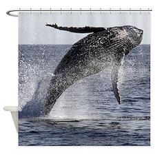 Humpback Breach Shower Curtain