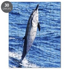 Beautiful Standing Dolphin Puzzle