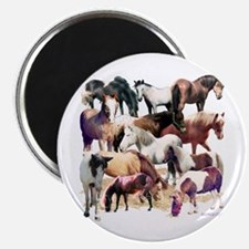 Ponies Magnet