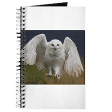 Cute White owl Journal