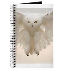 Unique Ghost Journal