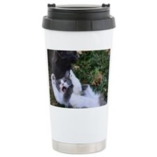Playful Cats Travel Mug