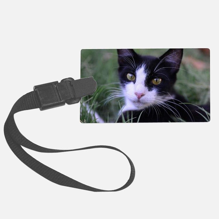 Cute Cat theme Luggage Tag