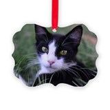 Black and white cat Picture Frame Ornaments