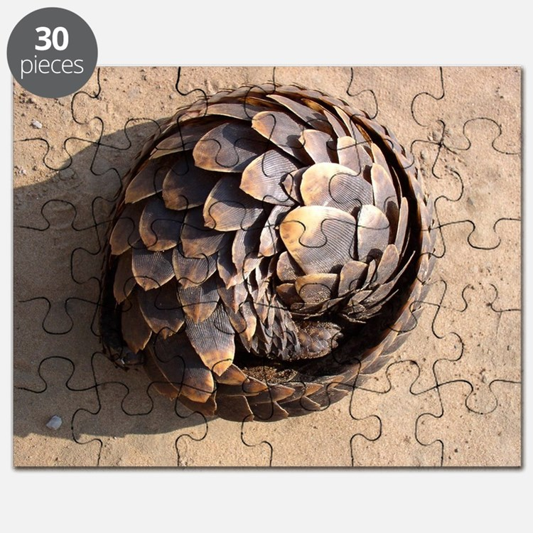 curled up pangolin Puzzle