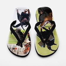 Working Rottweiler Flip Flops