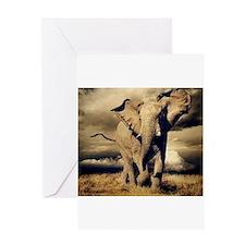 bull elephant Greeting Cards