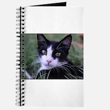 Cute Black and white tuxedo cat Journal