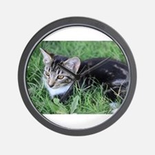 Unique Brown tabby cat Wall Clock