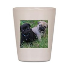 Pug Puppy Shot Glass