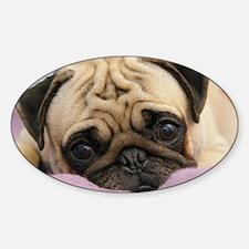 Pug Puppy Sticker (Oval)
