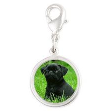 Pug Puppy Silver Round Charm