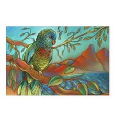St Lucia Parrot Postcards (Package of 8)