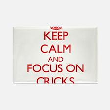 Keep Calm and focus on Cricks Magnets