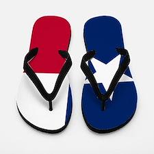 Cute Patriotic Flip Flops