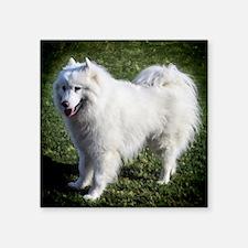 """Happy Samoyed Square Sticker 3"""" x 3"""""""