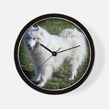 Happy Samoyed Wall Clock